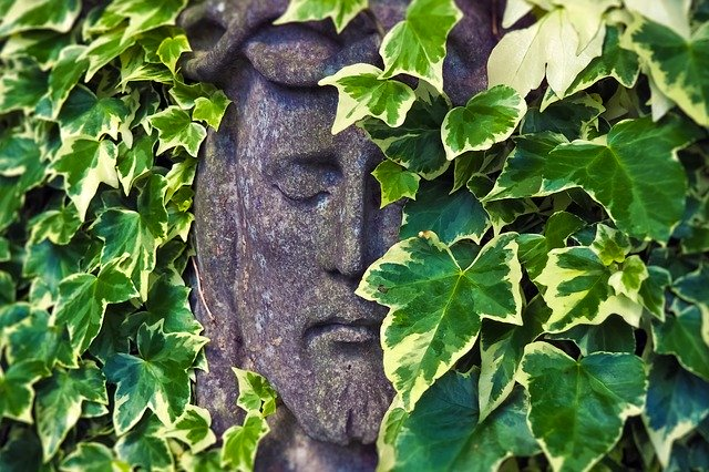 Vines overgrowing a statue – CBD oil for cancer